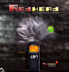 redhead-windscreen