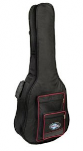 Padded-Bass-Case