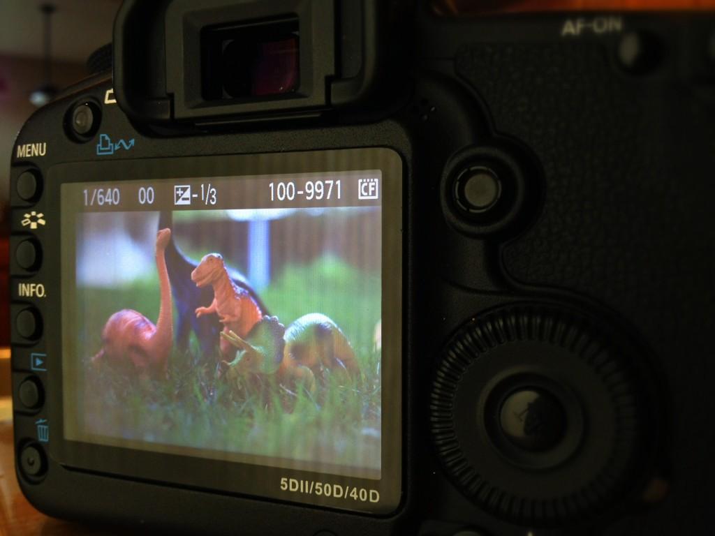 Canon5DMarkII-Nikon-50mm